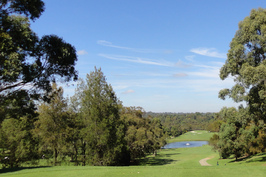 Asquith Golf Club Course Development Banner