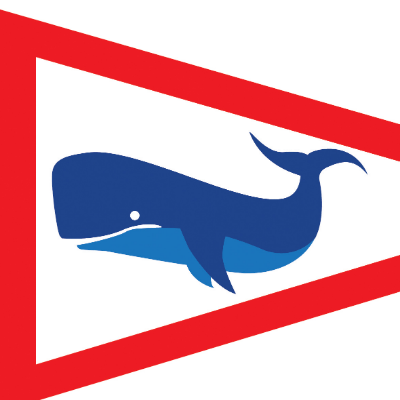 Junior Windsurfing Program Logo