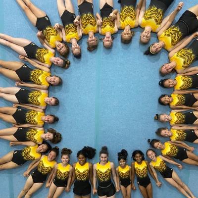 SAVE OUR CLUB-Sydney Hills Gymnastics Financial Hardship Fund