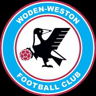 Wanderers Return to Football Logo