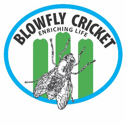 NDCC BlowFly Cricket Inclusive Centre