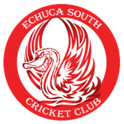 Pitch in for the ESCC pitch