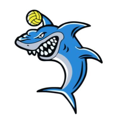 CSWPC Chapel Hill Scholarship Fund Logo