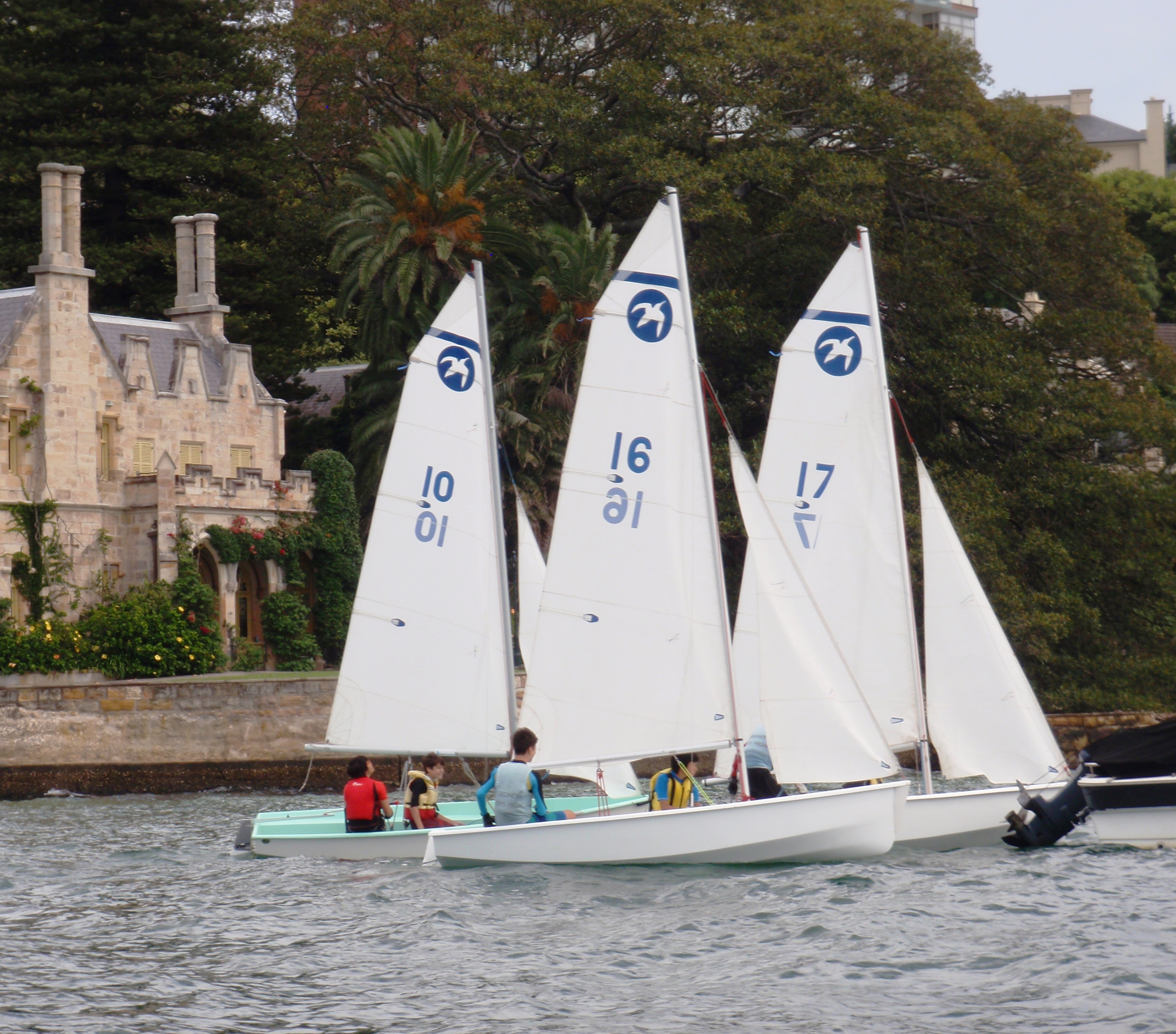 Sydney Boys Sailing Banner