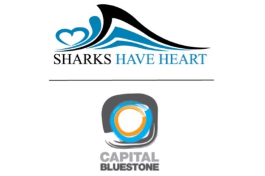 Sharks Have Heart Banner