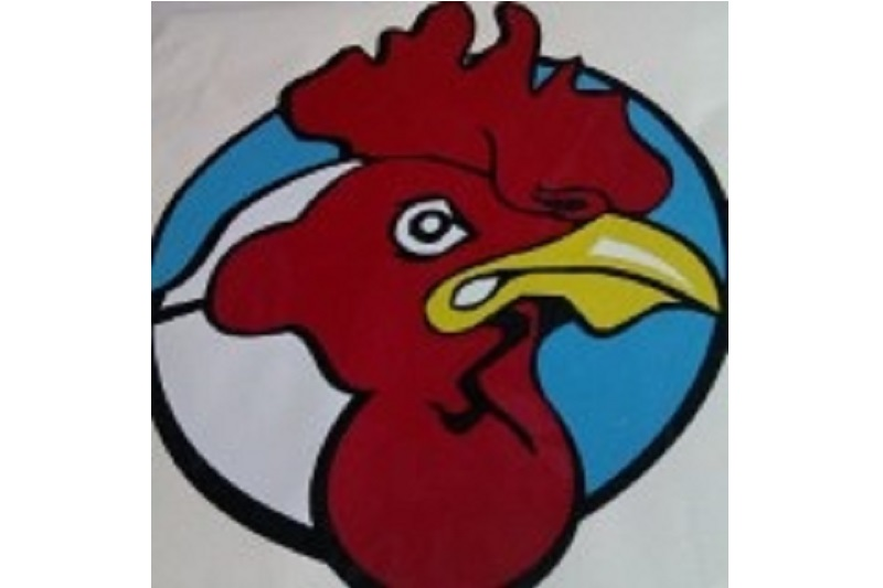 Theodore Junior Roosters Rugby League Football Club Banner