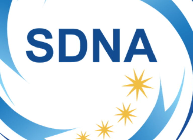 Sandringham and District Netball Association Logo