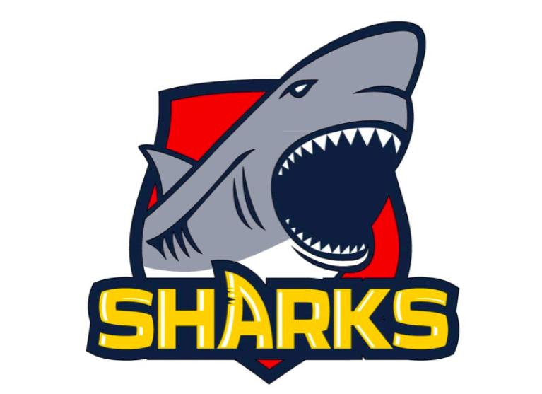 The SA Sharks Under 19 Gridiron Logo