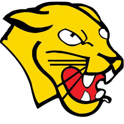Free Kicks Program Logo