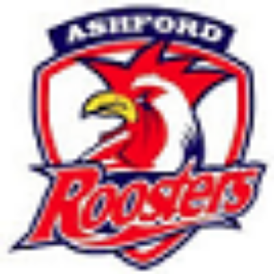 Ashford Roosters JRL Development Fund Logo
