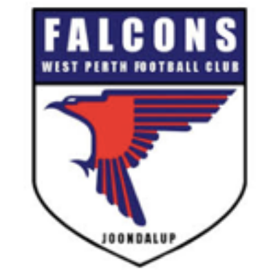 Falcons Fighting Fund Logo