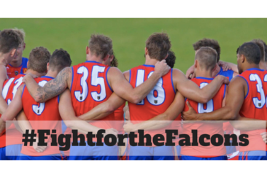 Falcons Fighting Fund Banner