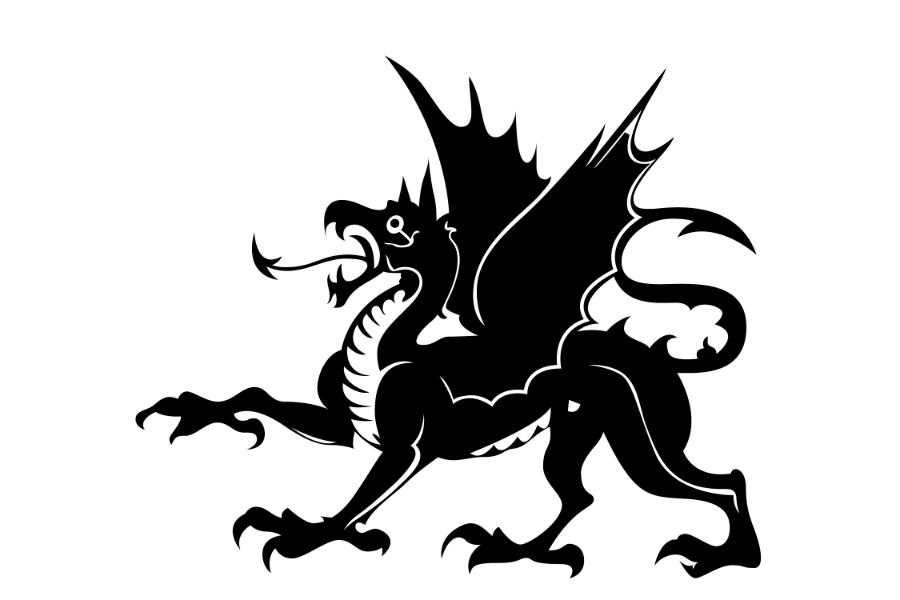 Gungahlin Dragons Water Polo Club Banner
