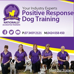Positive Response Dog Training