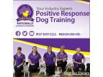 Positive Response Dog Training - Dog & Puppy Training - Brisbane, Queensland.