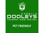 Pet Friendly Motel Capella, QLD - Dooleys Capella Tavern & Motel