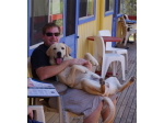 Pet Friendly Accommodation Merimbula, NSW - Top of the Lake Holiday Units -
