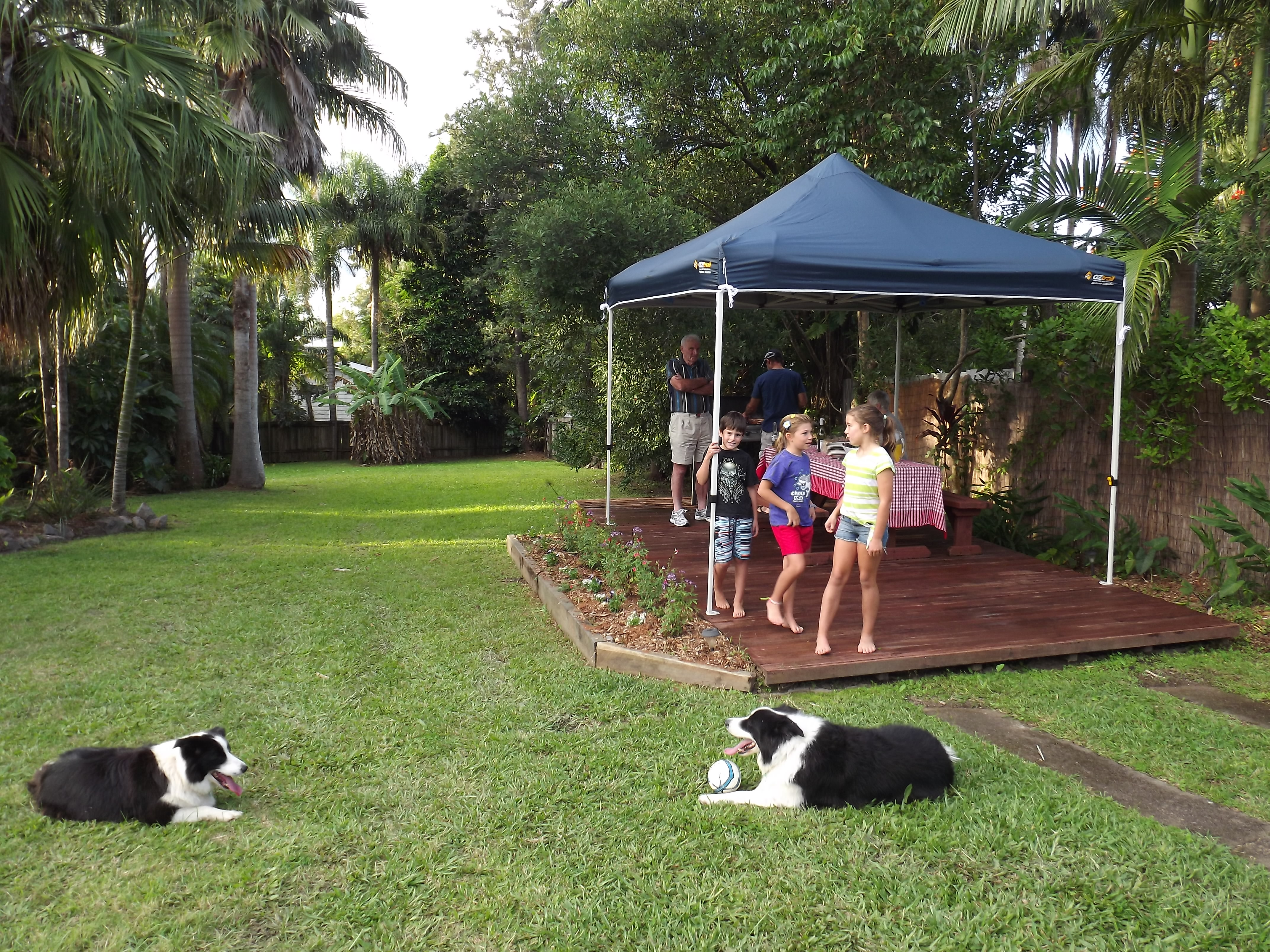 Pet friendly yard gallery image