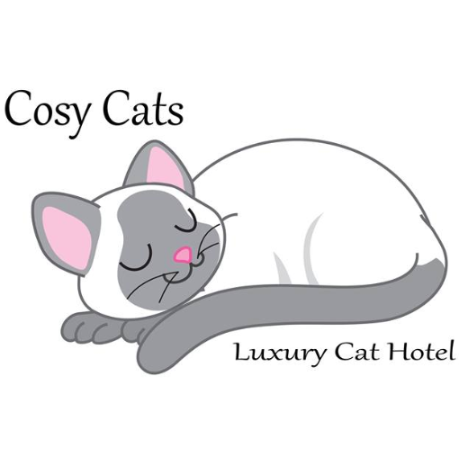 Cosy Cats : Phone : 03 62671140