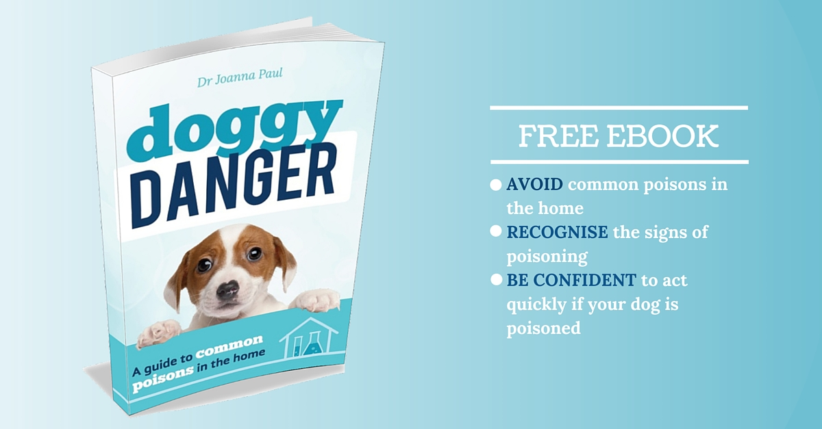 Doggy Danger - A free ebook gallery image