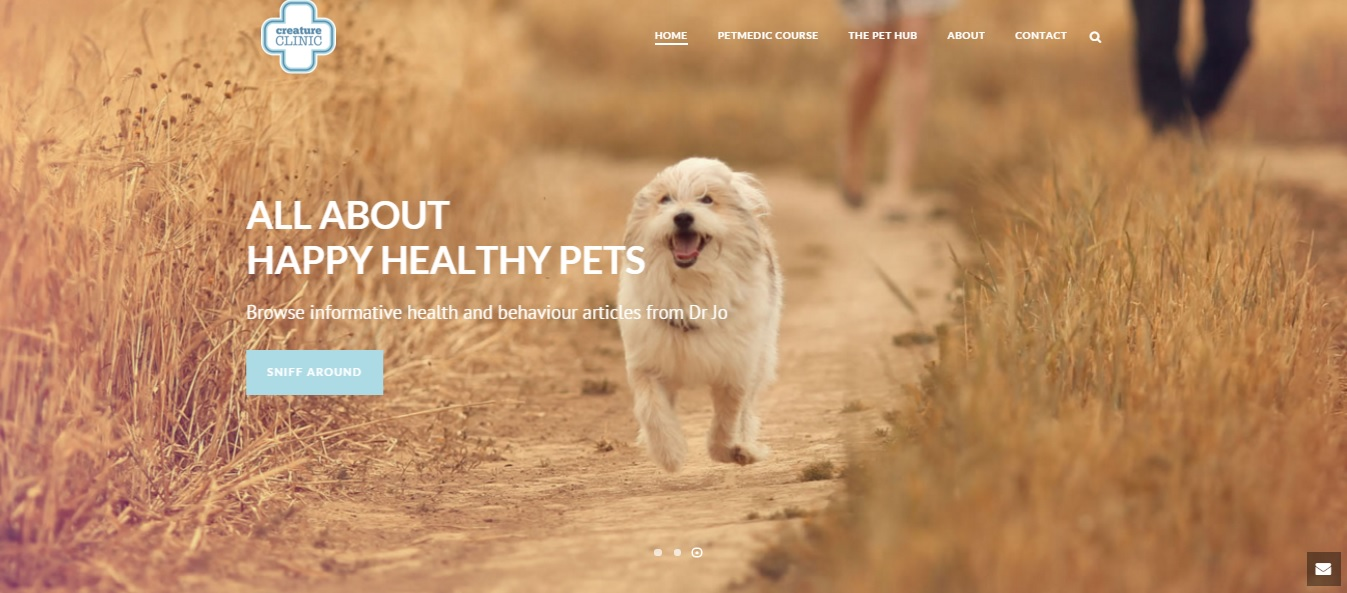 A Veterinarian's Guide to Happy, Healthy Pets gallery image
