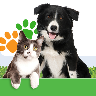 Call 13-PETS gallery image