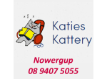 Cattery & Small Pet Boarding Perth - Katies Kattery -