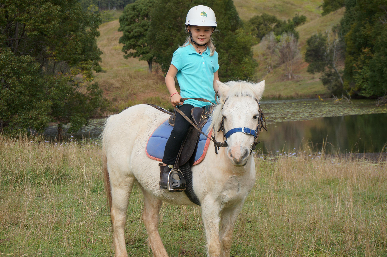 Horse riding fun gallery image