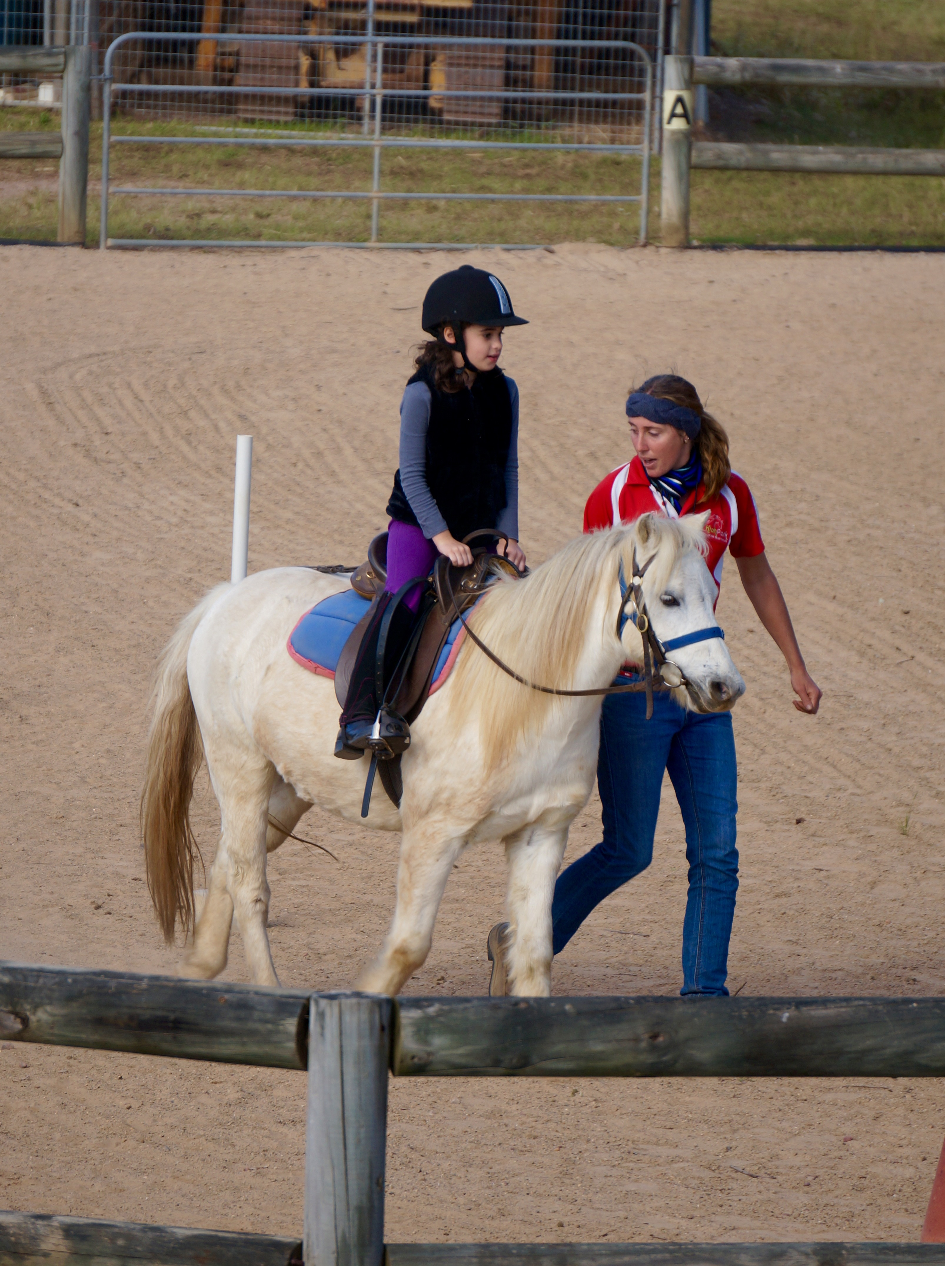Horse riding lessons gallery image