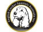 English Cocker Spaniels Australia Inc. Dog Rescue, Foster & Adoption -