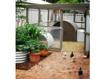 Suburban Farmer - Pet Food, Stock Feed, Chicken Coops & Poultry