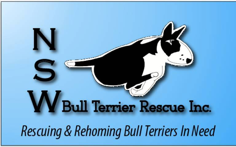 NSW Bull Terrier Rescue Inc. gallery image