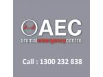 Animal Emergency Centres - Woolloongabba, QLD