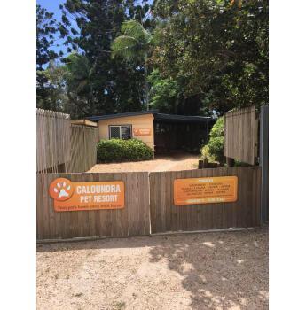 Caloundra Pet Resort - Sunshine Coast, QLD