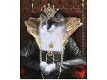 Pompous Pets - Custom Pet Portraits, Products & Accessories Online