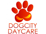 Dogcity Daycare - Grooming, Training and Daycare - Kent Town, South Australia