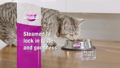 Elisheba in the Whiskas TV commercial