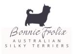 Bonniefrolix Australian Silky Terrier Breeder - Dandenong Ranges, VIC