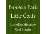 Banksia Park Little Goats - Miniature Goat Breeder, Victoria.