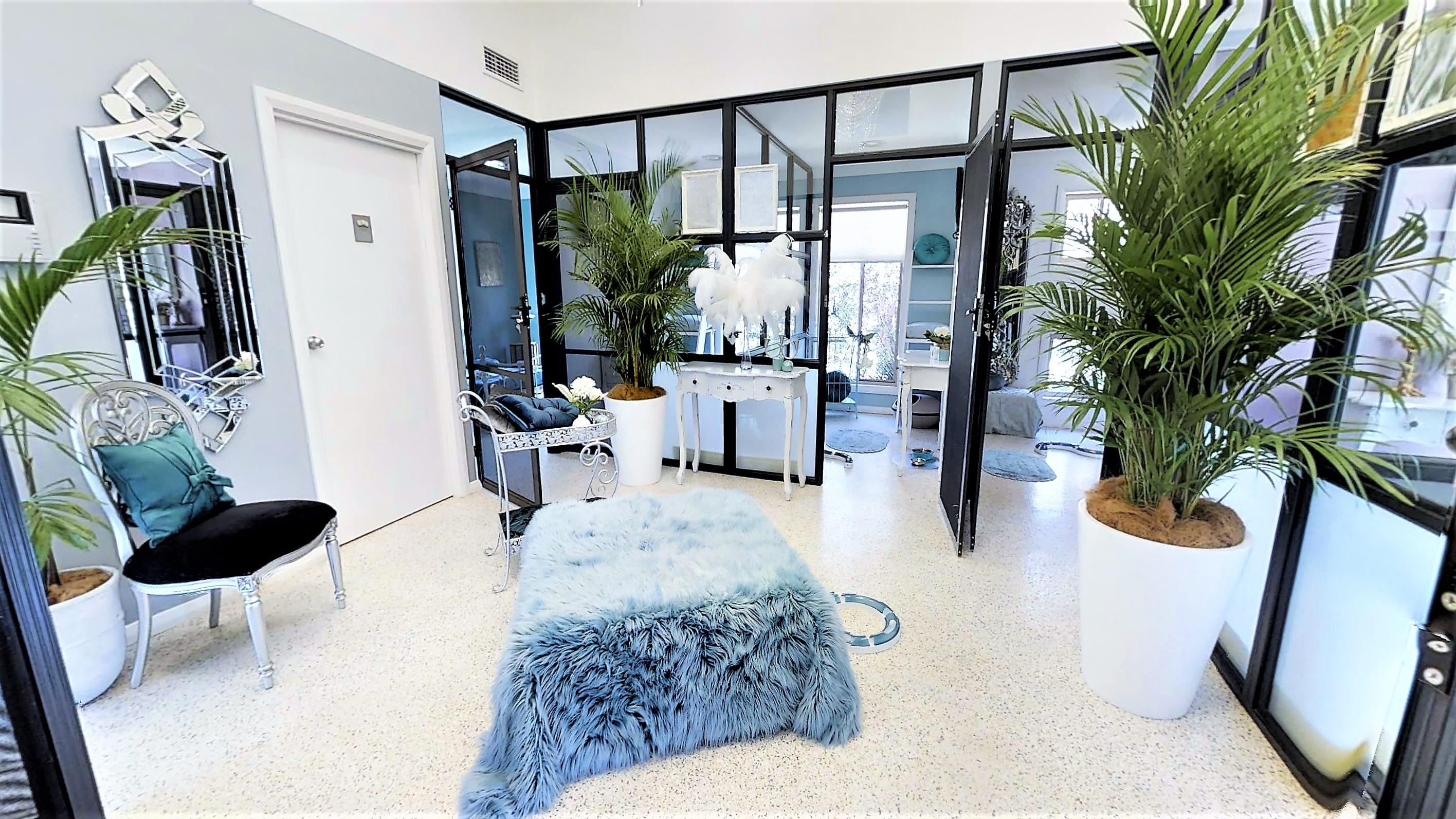 The Great Catsby Luxury Kitty Lounge Room
