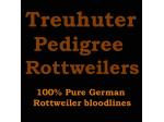 Treuhuter -  Pedigree Rottweiler Breeder - Melbourne, VIC