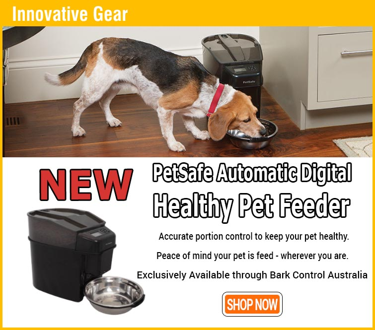 PetSafe Healthy Pet Simply Feed Auto Pet Feeder gallery image