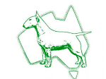 National Bull Terrier Council Australia