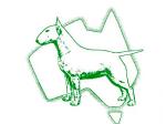 National Bull Terrier Council Australia