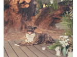 Pet Friendly Accommodation Margaret River, WA - Silversprings Cottages, Weddings, & Wine -