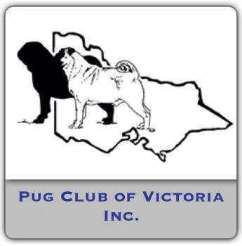 The Pug Club of Victoria