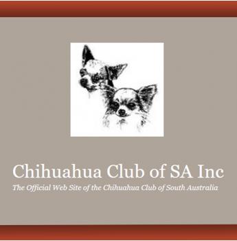 The Chihuahua Club of SA