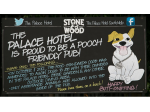 Pet Friendly Beer Garden at The Palace Hotel South Melbourne