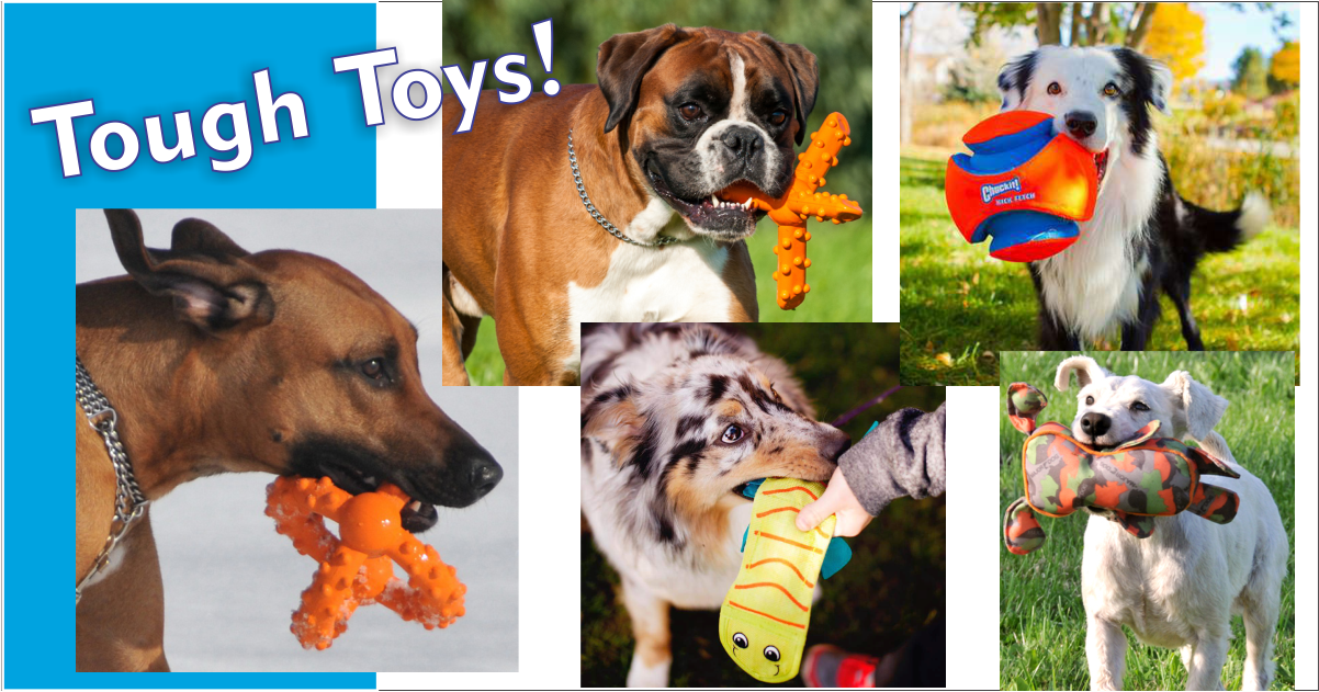 Dog Toys gallery image