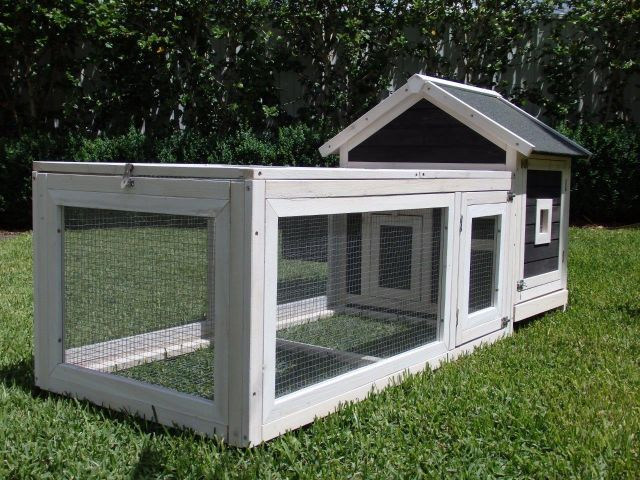 Mosquito Proof Rabbit Hutch gallery image